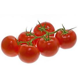 BIO paradajky